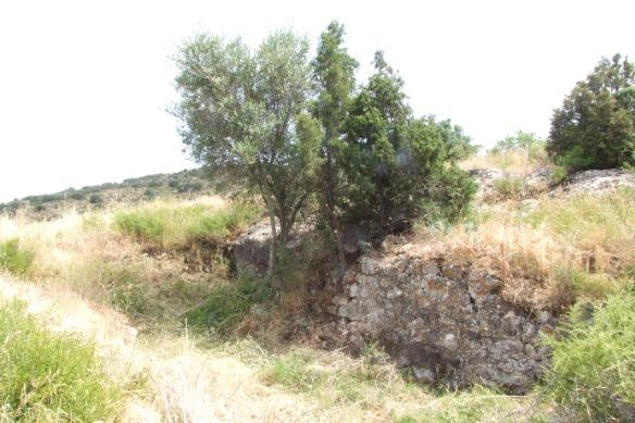 Restes del mur que es conserva i forma de la planta de l'església (Foto de l'Arxiu Gavín)